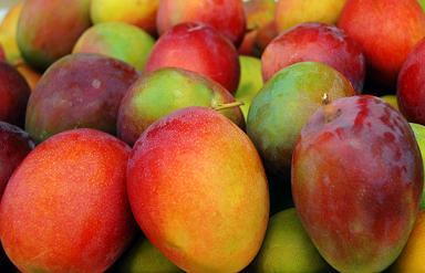 Frutti Esotici