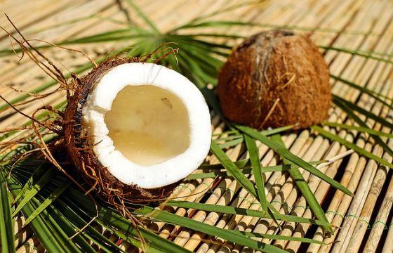 good quality factory authentic best value Shampoo Ultra Dolce di Garnier al cacao e olio di cocco