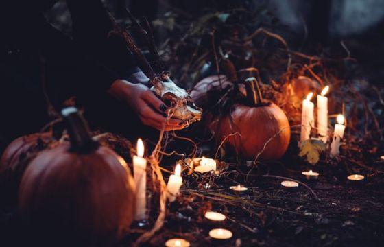 Le pi strane e divertenti decorazioni di halloween - Decorazioni halloween fatte in casa ...