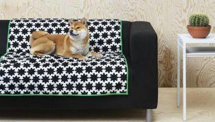 Ikea lancia Lurvig la linea di arredamento per i pet