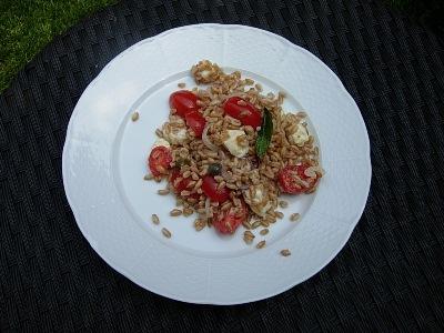Insalata fredda di farro con pomodorini e mozzarella