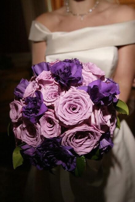 Rose viola