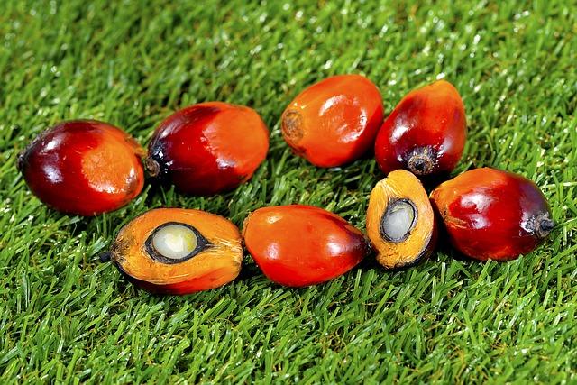 Tutto quello che devi sapere sull'olio di palma