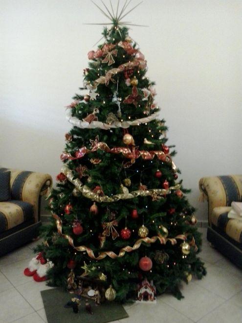 Foto alberi di natale inviaci la foto del tuo albero di for Albero di natale vero