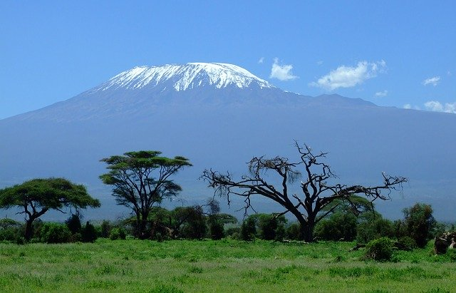 Un safari in Tanzania