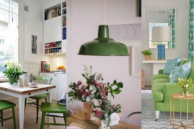 Complementi di arredo greenery: le proposte per rendere più bella la casa