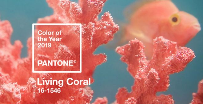 Living Coral: il colore Pantone dell'anno 2019
