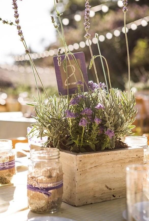 Addobbi Floreali Matrimonio Rustico : Foto addobbi floreali tipo di fiori lavanda